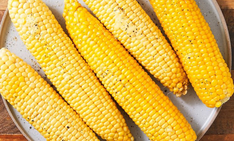 Commercialization of biotech corn to spur growth of maize production